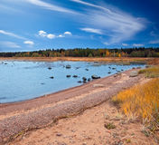 Russia. Autumn sandy coast of the Gulf of Finland Royalty Free Stock Photo