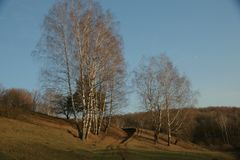 Autumn scenery in Russia,a suburb of Nizhny Novgorod royalty free stock images