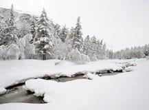 Russia. Caucasus. Elbrus ski resort. Snowfall Royalty Free Stock Image