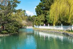 Russia city of Sochi Adler district park Southern cultures. Pond with reflection of trees.  stock photos