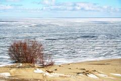 Russia. Coastline in winter on the Kurshskaya kosa Royalty Free Stock Photos