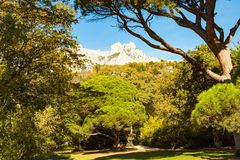 Russia, Crimea, Alupka 03 November 2018: View of AI-Petri Mountain from Vorontsov Palace Upper Park. Russia, Crimea, Alupka 03 November 2018: View of AI-Petri royalty free stock photography