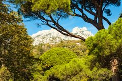 Russia, Crimea, Alupka 03 November 2018: View of AI-Petri Mountain from Vorontsov Palace Upper Park. Russia, Crimea, Alupka 03 November 2018: View of AI-Petri royalty free stock images