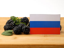 Russia flag on a wooden panel with blackberries isolated on a wh Royalty Free Stock Images