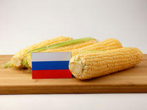 Russia flag on a wooden panel with corn isolated on a white back Royalty Free Stock Photos