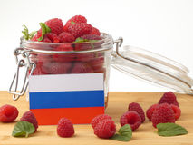 Russia flag on a wooden panel with raspberries isolated on a whi Stock Photo