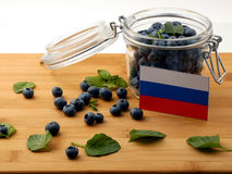 Russia flag on a wooden plank with blueberries  on white Stock Photo