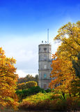 Russia,Gatchina, bright autumn tree in park near a palace in a sunny day Stock Photos