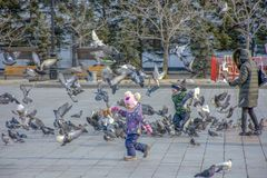 Russia, Khabarovsk, Lenin square: Children play with pigeons stock image