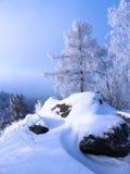 russia krajobrazowa zima Obrazy Stock