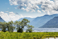 Russia. The lake Teletsky landscape mountains in the summer at s Stock Photos