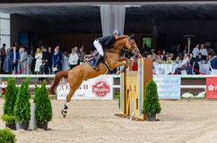 Russia, Leningrad region, Enkolovo village - JULY 7, 2019:INTERNATIONAL COMPETITIONS CSI ** - WORLD CUP, World Cup stage royalty free stock photo