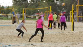 People Playing Volleyball stock video