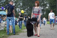 Russia, Moscow , may 26, 2016, woman with black poodle, editorial royalty free stock photos