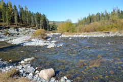 Russia, mountain Altai, river Multa flows from the lower Multinskoe lake Stock Photo