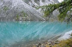 Russia, Mountain Altai. The shore of Big Shavlinskoye lake in august. Russia, Mountain Altai. The shore of Big Shavlinskoye lake Royalty Free Stock Images