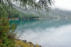 Russia, Mountain Altai. The shore of Shavlinskoye lake covered with snow in August, 22, 2016. Russia, Mountain Altai. The shore of Shavlinskoye lake covered with Royalty Free Stock Image