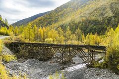 Russia. Nature of the Far East: Wooden bridge on the forest road royalty free stock photography