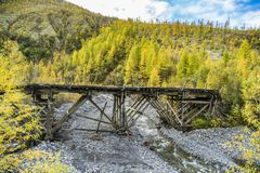 Russia. Nature of the Far East: Wooden bridge on the forest road stock photography