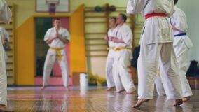 Russia, Novosibirsk, August 15, 2018 A group of people practicing karate strokes indoors. Endurance training in karate. Russia, Novosibirsk, August 15, 2018. A stock video footage