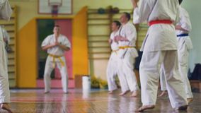 Russia, Novosibirsk, August 15, 2018 A group of people practicing karate strokes indoors. Endurance training in karate. Russia, Novosibirsk, August 15, 2018. A stock video