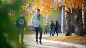 Russia, Novosibirsk 2015: Autumn park near the school. Students go home. Russia, Novosibirsk 2015: Elementary-school students return home after lessons in the stock footage