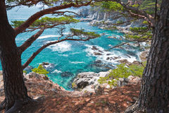 Russia, Primorye, coastal cedar rocky  azure coast Stock Photography