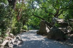 Walkway in the Vorontsov park. Russia, the Republic of Crimea, the city of Alupka. 06/09/2018 Royalty Free Stock Photography