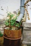 Russia runoff rust Stock Image