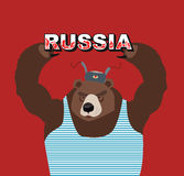 Russia. Russian bear keeps Stock Photos