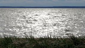 Russia. Saint-Petersburg. Kronshtadt. The coast of the Gulf of Finland near the Fort `SHANETS`. stock video footage
