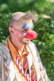 Portrait of a Clown with a Red Nose royalty free stock image
