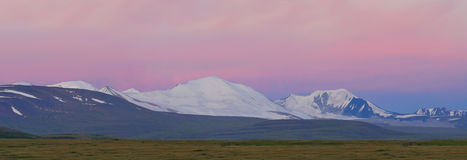 Russia. Siberia. Altai. View on white snow summits. Of Tavan-Bogdo-Ula mountain ridge (five holy summits, in mongolian)  at a sunrise in rose tint Stock Images
