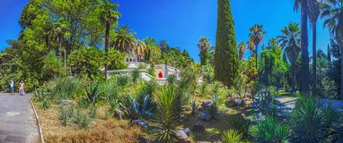RUSSIA, SOCHI, AUGUST 30, 2015: Panoramic view of the Arboretum, Sochi, Russia on August 30, 2015. Stock Photo