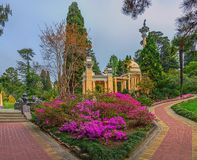 RUSSIA, SOCHI, MAY 1, 2015: Flowerbed with flowering azaleas near the Moorish arbor, Sochi Arboretum, Russia, on May 1, 2015. Park Arboretum is a landmark in Stock Photo