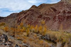 Colorful rocks and Golden autumn Stock Photography