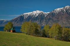 Late spring on the shore of lake Teletskoye. stock images