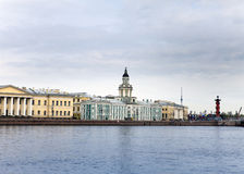 Russia. St.-Petersburg.  cabinet of curiosities- odditorium Royalty Free Stock Photo
