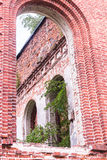 Russia, St. Petersburg, Priozersk, August 2016: Picturesque ruins Royalty Free Stock Photography