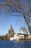 Russia, suburb of Saint Petersburg, the St. Peter and Paul Cathedral in spring Stock Images