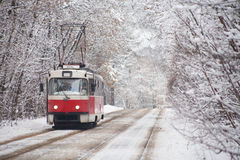 Russian tram on park. Russian tram moves on rails in park winter royalty free stock photos