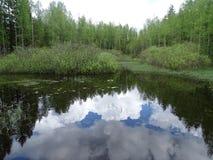 Russia. A trip to Central Russia. Nelidovo. Autumn. Stock Image