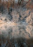 River shore in winter Royalty Free Stock Image