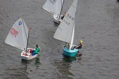Swimming on sails.