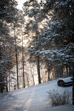 Russiaan winter Royalty Free Stock Photos