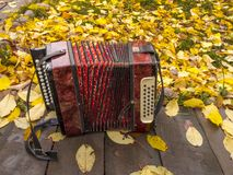 Russian accordion Stock Photos