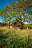 Russian Antique Wooden Village House In Russia In Summer, Spring Stock Images