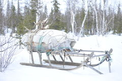Russian Arctic Aboriginal Royalty Free Stock Photography
