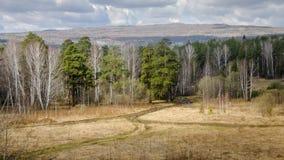 Russian autumn landscape Stock Photos