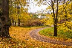 Russian autumn landscape. Paths in the Oranienbaum Park. Saint-Petersburg. Autumn 2016. Stock Image